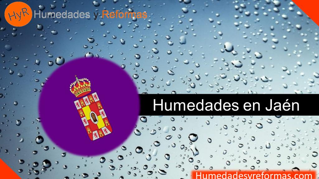 Humedades Jaén